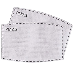 ADULT SIZE PM2.5 Filters - 2 Pack